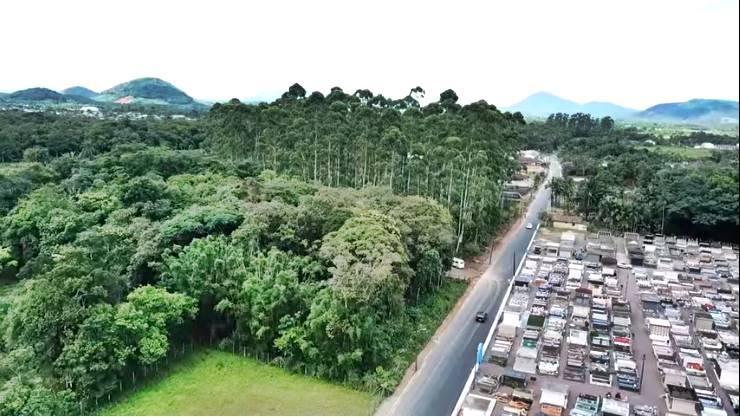 Pavimentação asfáltica no Bairro Rio da Onça avança e traz benefícios à comunidade