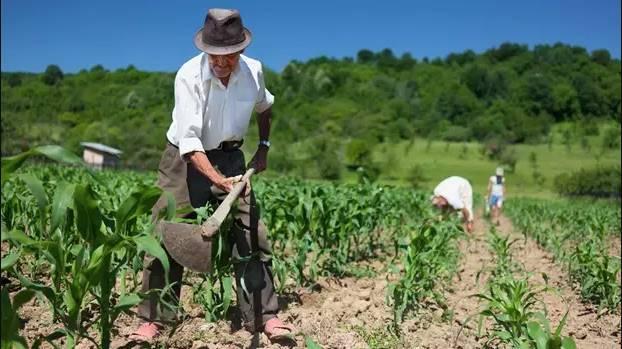 Produtores rurais podem pedir desconto no IPTU em Garuva