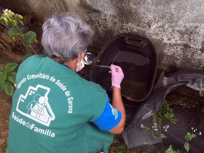 DENGUE: Em Garuva a vigilância em saúde já encontrou 16 focos do mosquito transmissor somente neste ano